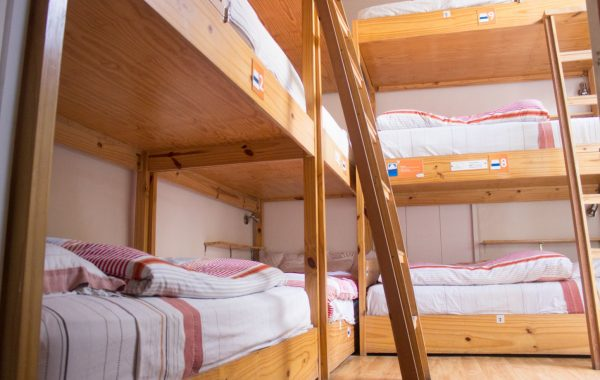 Room Mixed Shared Bunk Bed